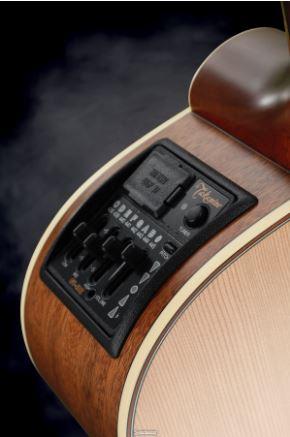Đàn Guitar Takamine P3FCN 1