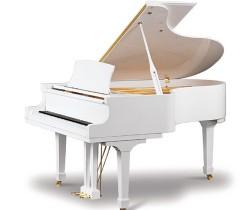 Đàn Piano Ritmuller GP188R1